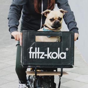 A Fritz-Kola újra divatba hozta a kólázást